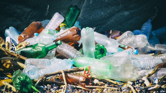 Проблема не только в экологии. /Фото: oagb.ru.