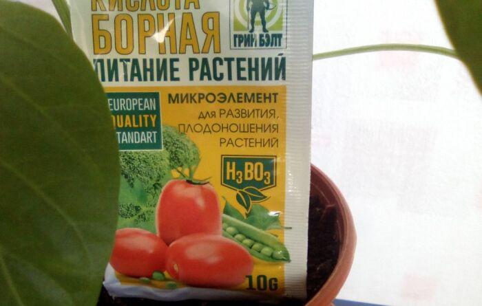 Чем обработать томаты во время цветения, чтобы собрать богатый урожай