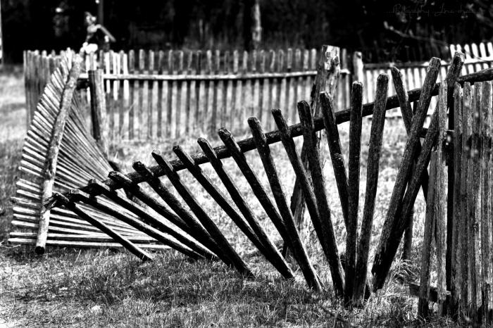 За кривой забор накажут. /Фото: photoclub.by.