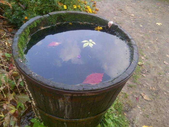 Весной будет готовая вода для полива. /Фото: twitter.com.