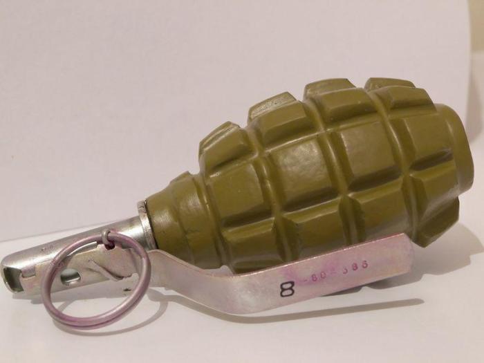 Это учебные гранаты. /Фото: vesti.ua.