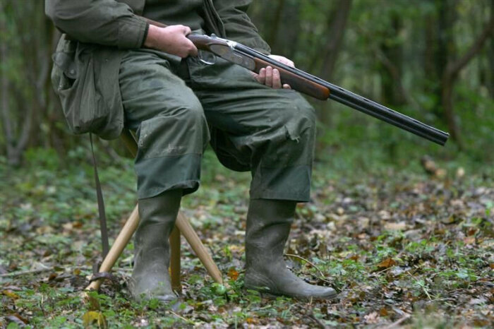 Получить оружие по наследству будет не просто. /Фото: Яндекс.Новости.