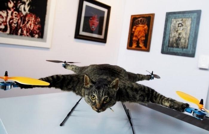 Самые странные дроны.
