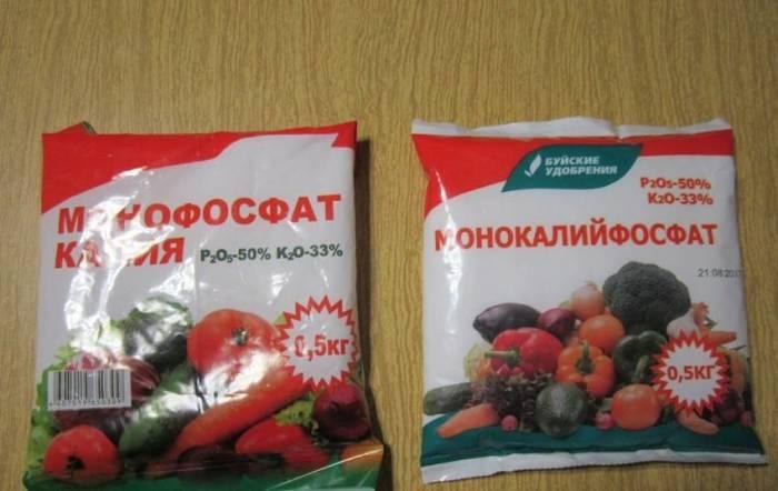 Калий поможет делу. /Фото: kartoska.ru.