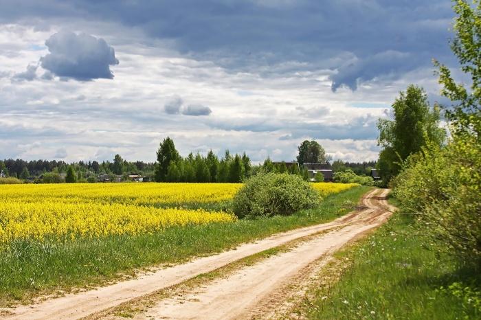Это все еще дорога. /Фото: photocentra.ru.