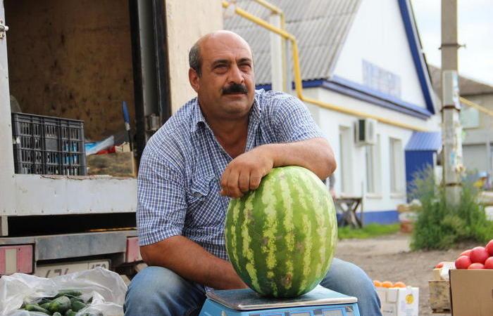 Дельный совет от фермера, как выбрать качественный арбуз и не следовать заблуждениям