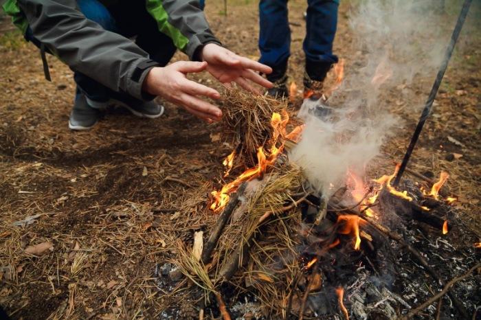 Хвоя отлично горит. /Фото: kakprosto.ru.