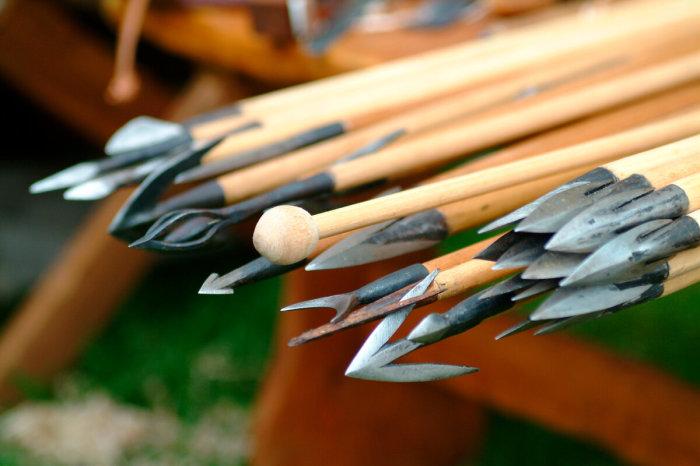 На самом деле это обычные стрелы. /Фото: yandex.by.