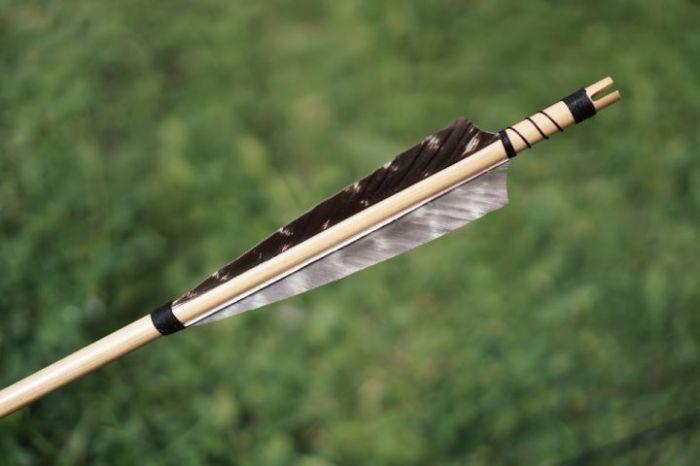 Оперение - важнейшая часть стрелы. /Фото: pxhere.com.