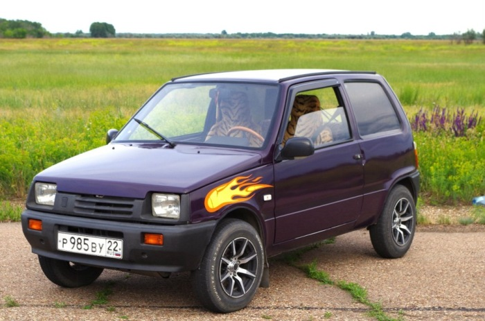 Идеально подходит для путешествий. /Фото: drive2.ru.