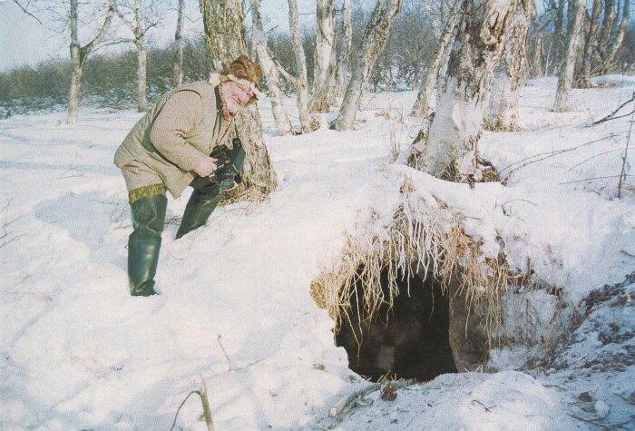 Зимой мишку лучше не тревожить. /Фото: funart.pro.