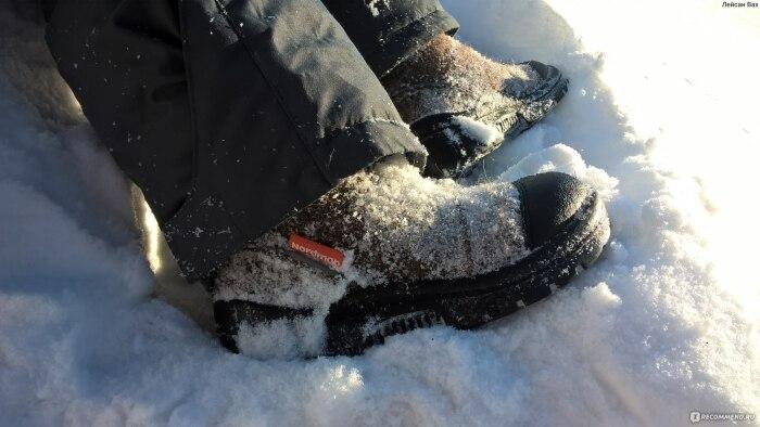 А еще нужно отряхивать ноги перед посадкой. /Фото: irecommend.ru.