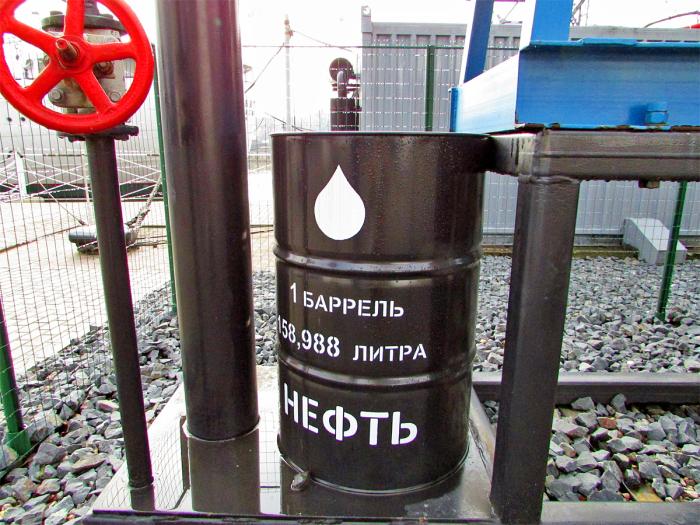 Один баррель - это слишком много литров. /Фото: polevskoy.ru.