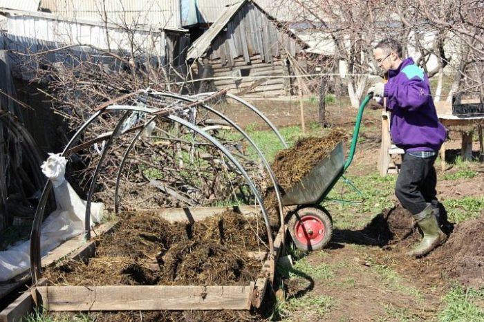 Лучше всего сделать компост. /Фото: orel.kp.ru.