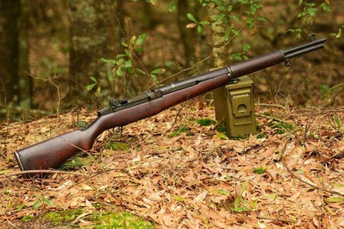 Грозное оружие. /Фото: quentinchaillet.fr.