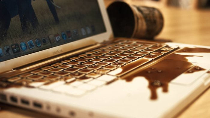Может случиться с каждым. /Фото: remnoutbuk.ru.