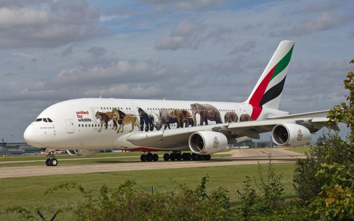 Самый большой среди пассажирских. /Фото: wallpapercave.com.