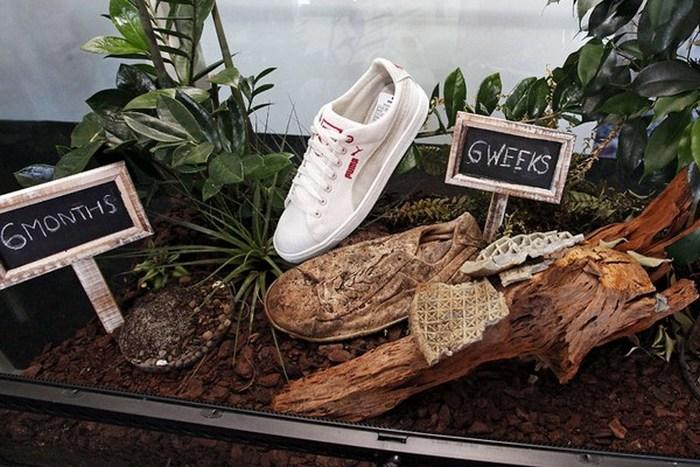 Обувь, которую можно отправить в мусорку.