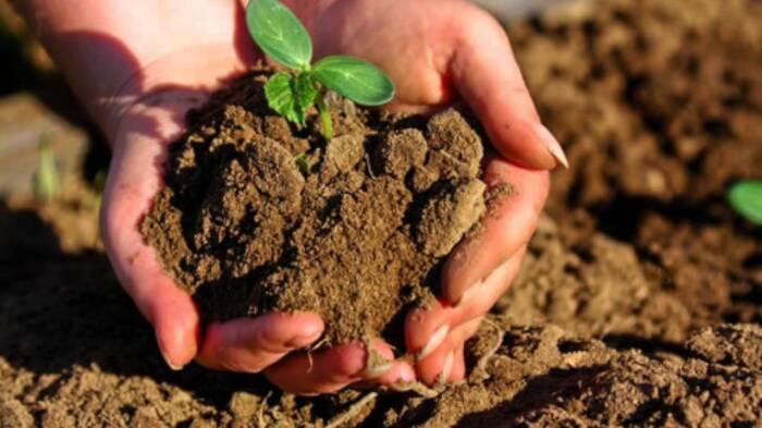 Нужно правильно использовать земли. /Фото: vesti-sudak.ru.