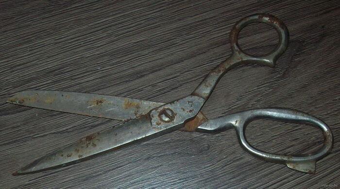 Ножницы старые, а сталь добротная. /Фото: ay.by.