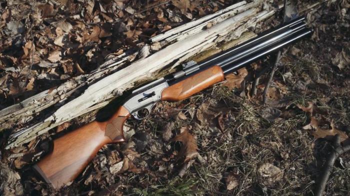 Отличное оружие. /Фото: gunsleague.com.