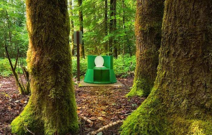 Для медведей? /Фото: onedio.com.