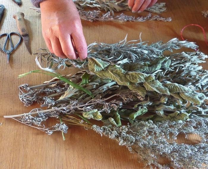 Травы создают приятный аромат. /Фото: ogorod.mirtesen.ru.