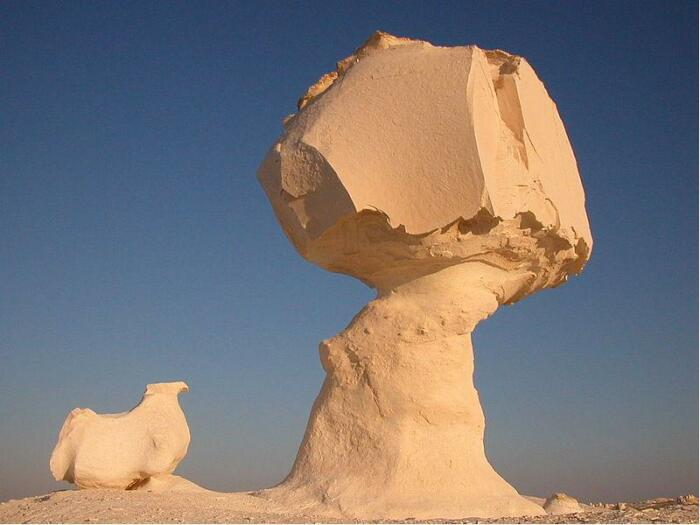 В природе встречается много загадочных людей. /Фото: akostra.livejournal.com.