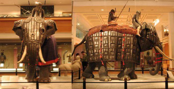 Слоны были грозным, но уязвимым живым оружием.