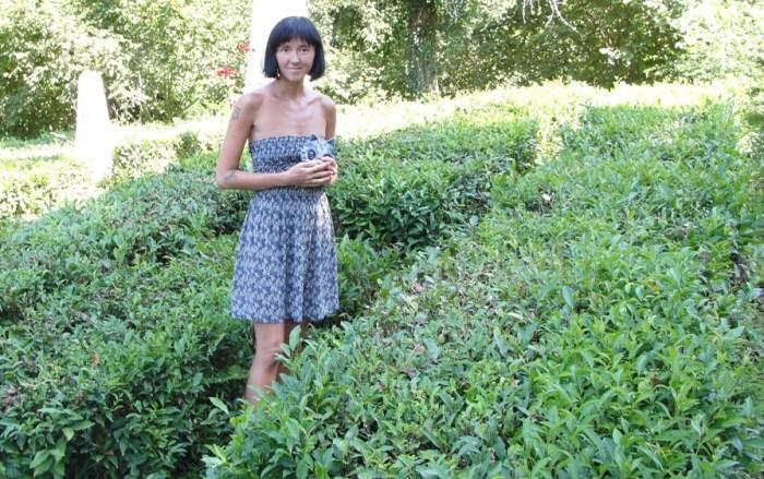 Горная чайная плантация недалеко от Сочи.