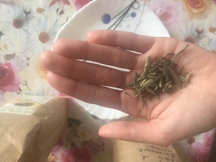 Белый чай – почки.
