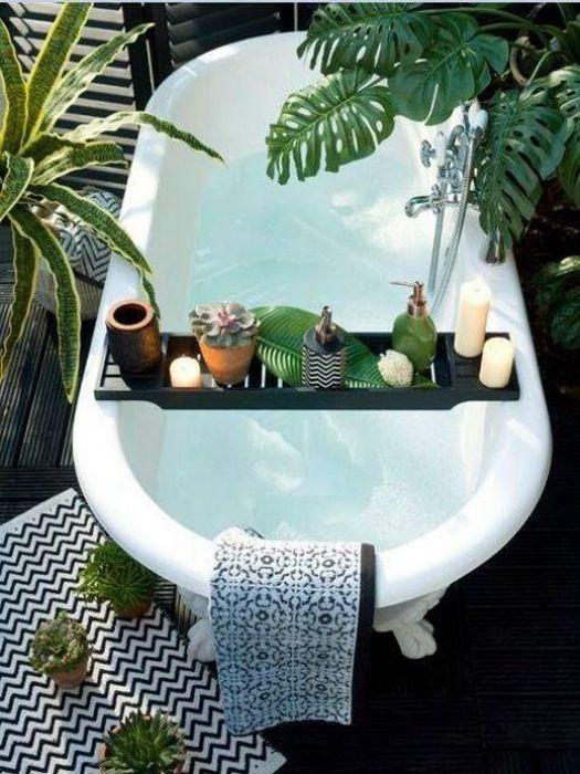 Растения в ванной.