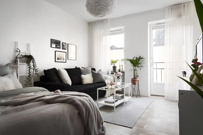 Зона гостиной и спальная зона.