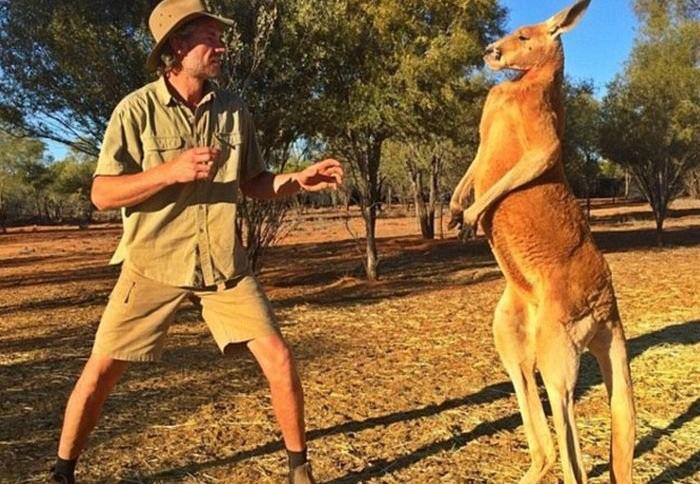 Такое можно увидеть только в Австралии.