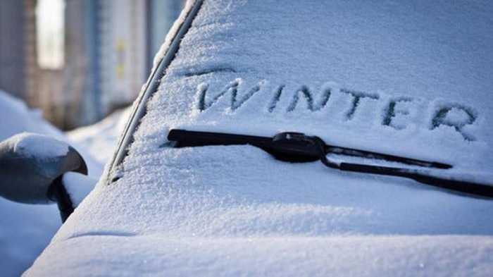 Зимой тяжело. /Фото: twitter.com.