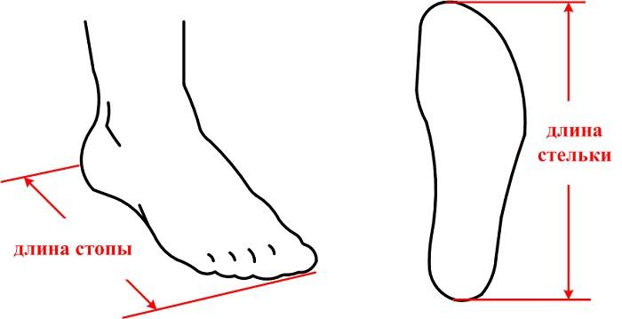 Измеряем длину стопы. | Фото: old.gmm-shop.ru.