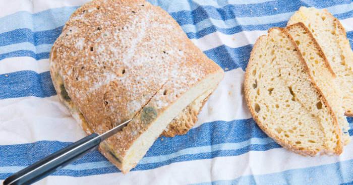 Можно ли употреблять в пищу «чистую» часть заплесневелого хлеба.