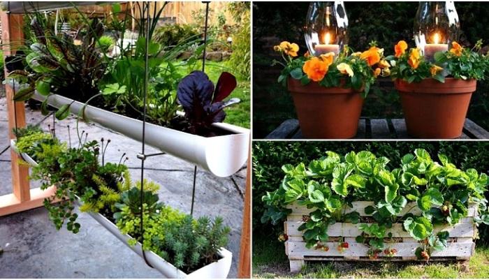 Крутые идеи для небольшого загородного участка.