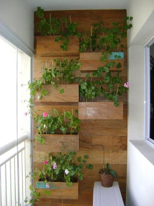 Если вы любите копаться в земле, но живете в квартире и нет своего дачного участка, тогда мини-палисадник на балконе на вам будут только в радость.