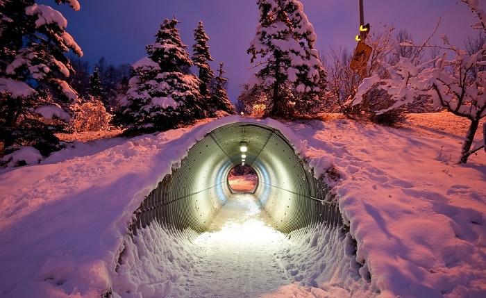 Освещенный туннель для животных, находящийся под шоссе.