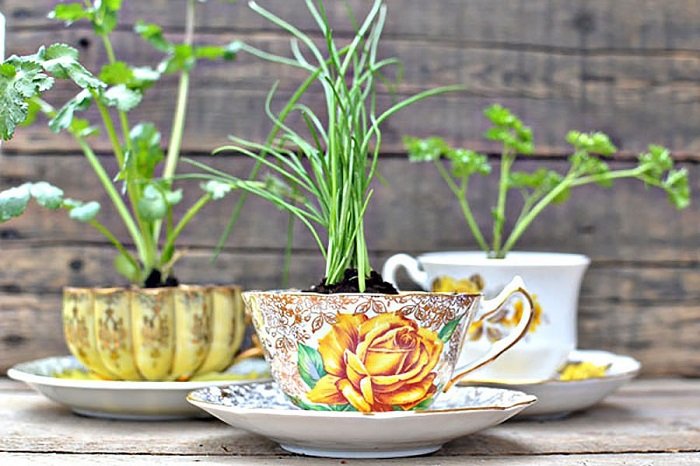 Клумбы бывают разных размеров, но клумба в чашке можно разместить в любой части вашего дома.