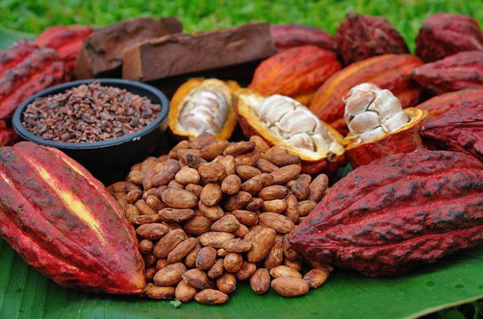 Полезные вещества в какао и сейчас делают этот напиток широко распространённым, его часто употребляют любители сладенького.