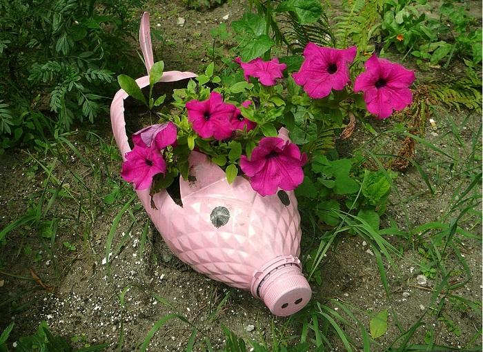 Посадите петунии в разные мини-клумбы, сделанные в виде забавных животных.