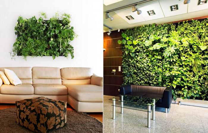 Вертикальное озеленение в интерьере.