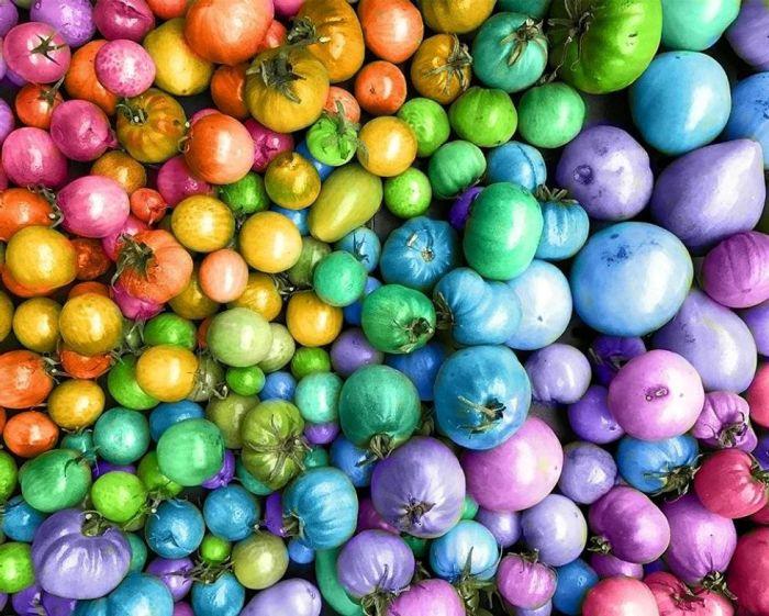 Радужные китайские помидоры. \ Фото: puzzleit.ru.