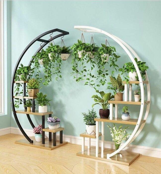 Оригинальный круговой стенд для цветов. \ Фото: hayko.tv.