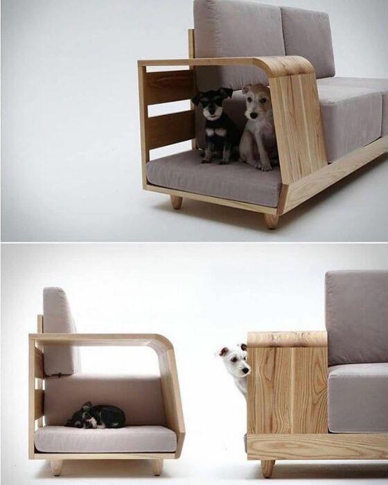 Диван с местом для кошек и собак. \ Фото: pinterest.com.