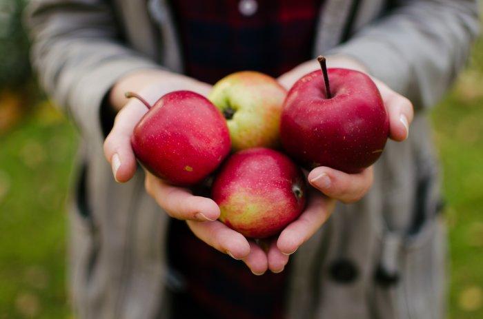 Яблочный уксус в помощь. \ Фото: twitter.com.