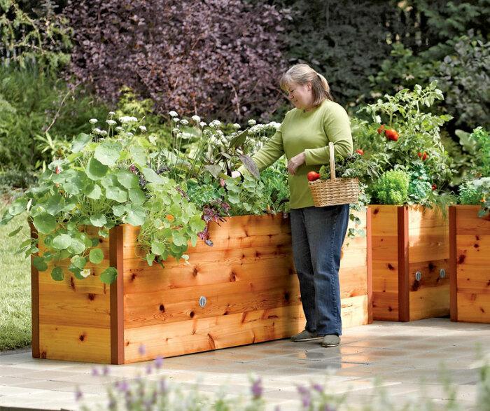 Высокие грядки. \ Фото: thegreenhead.com.