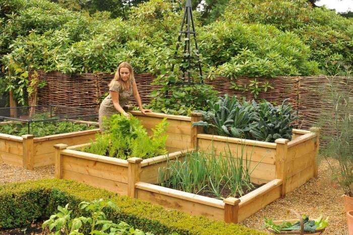 Такие грядки помогают повысить урожайность. \ Фото: harrodhorticultural.com.